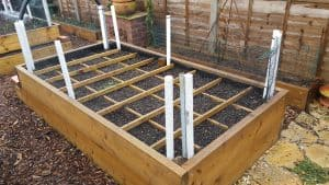 Raised Veg bed with divisions in place for SMG