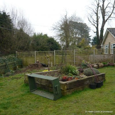 The New Garden – Part One