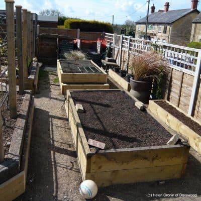 New Vegetable Garden – a brief overview