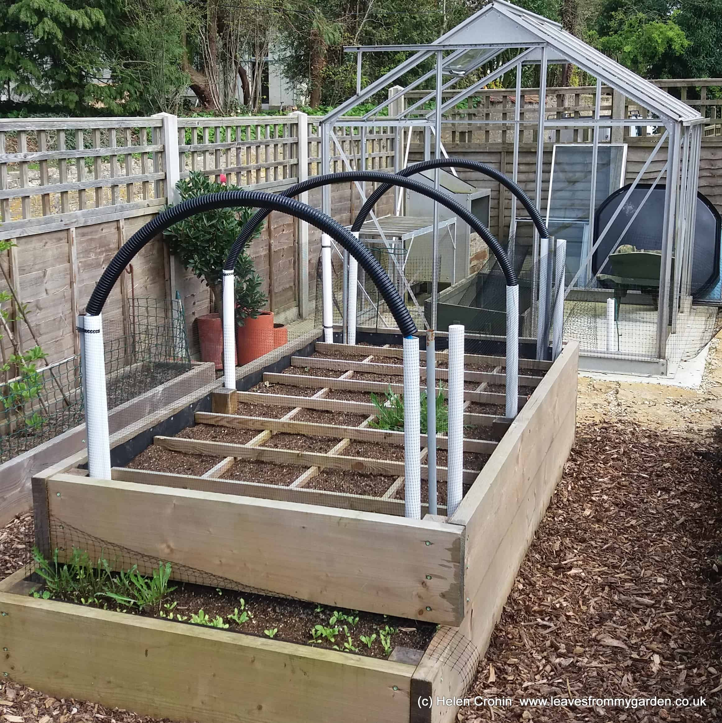 Raised SMG beds ready for planting
