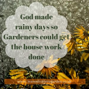 God made Rainy days so Gardeners can get the housework done