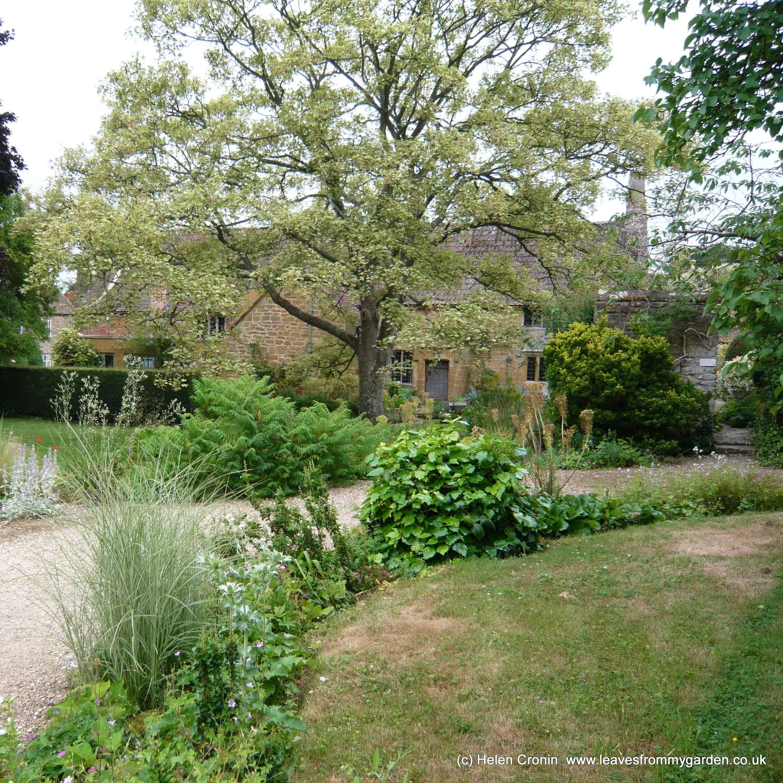 East lambrook manor gardens www.leavesfrommygarden.co.uk