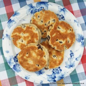 Dovewood Welsh Cakes from www.leavesfrommygarden.co.uk