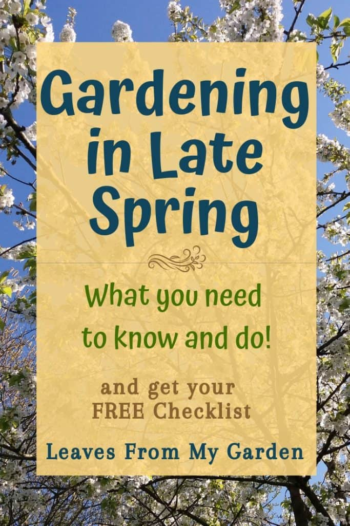 cherry-blossom-with-words-superimposed-over-it-gardening-in-late-spring-what-you-need-to-know-and-do-and-get-your-free-checklist-leaves-from-my-garden-co-uk
