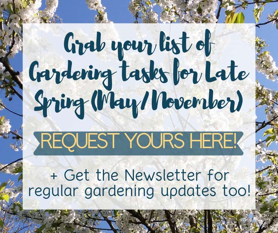 cherry-blossom-against-blue-sky-with-words-grab-your-list-of-gardening-tasks-for-late-spring-request-yours-here-and-get-the-newsletter-for-regular-gardening-updates-too