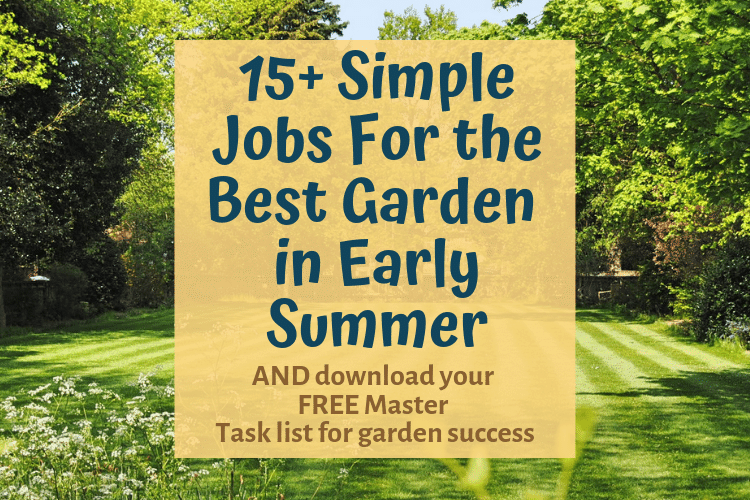 15+ Practical Tasks For The Best Early Summer Garden