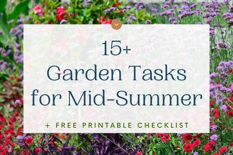 15+ Garden Tasks For Mid-Summer