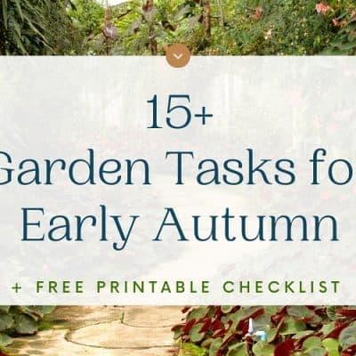 15+Garden Jobs for Early Autumn